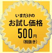 いまだけのお試し価格500円!